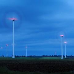 Fledermausgutachten bzw. Voruntersuchungen für Windenergieanlagen