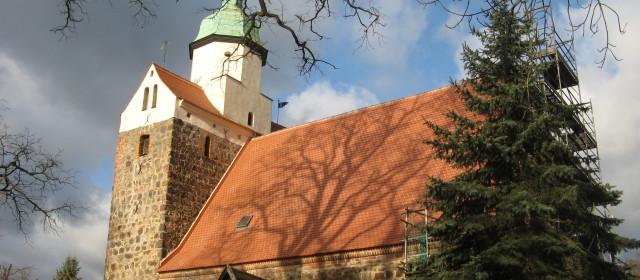 Monitoring von Fledermauskolonien in Kirchen